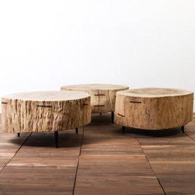 Elm Slab Coffee Table