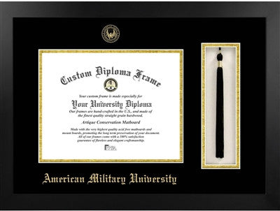Tassel, Classic Look, Glossy Finish, Gold Trim Embossed School Seal, Mahogany Wood Diploma Frame