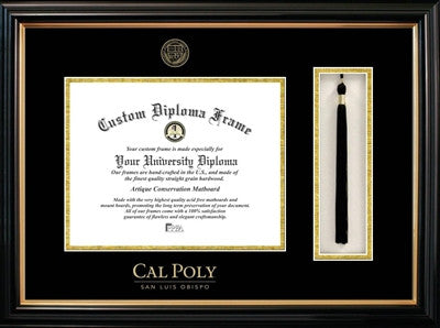 Tassel, Classic Look, Glossy Finish, Gold Trim, Embossed School Seal, Mahogany Wood Diploma Frame