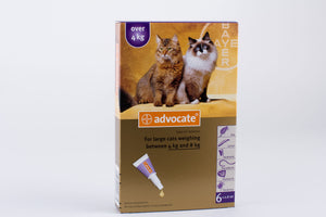 Advocate Large Cat Over 4kg (8.8lb) 6 Pipettes