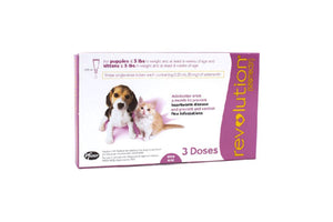 Revolution Pink for Cats and Small Dogs under 2.5kg (5lb) 3 Pipettes