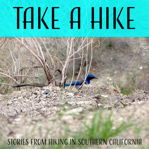 Take a Hike: Stough Canyon Park