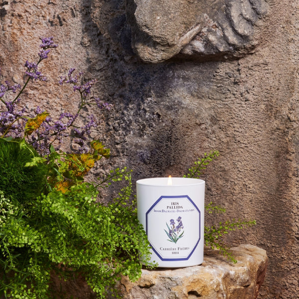Carriere Freres Iris Candle