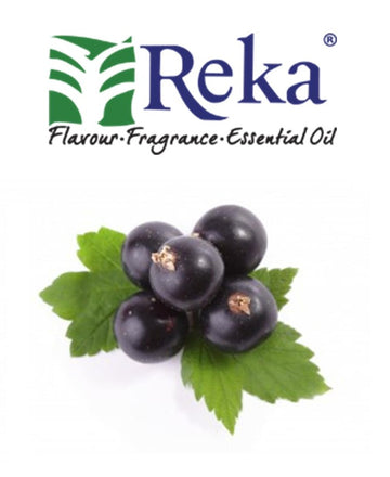 REKA - Blackcurrant