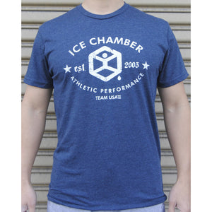 Ice Chamber 10 years anniversary Unisex Tee - Charcoal Grey