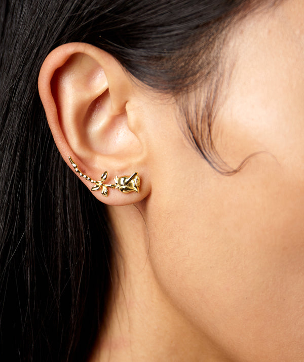 SHAMI ROSE EARRINGS
