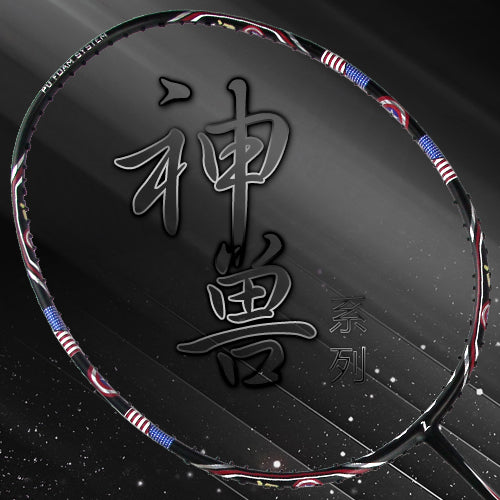 ZJ Star Badminton Racket 674