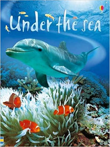 Under The Sea (Beginners Series) by Fiona Patchett