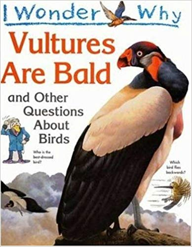 I Wonder Why Vultures Are Bald: and Other Questions About Birds