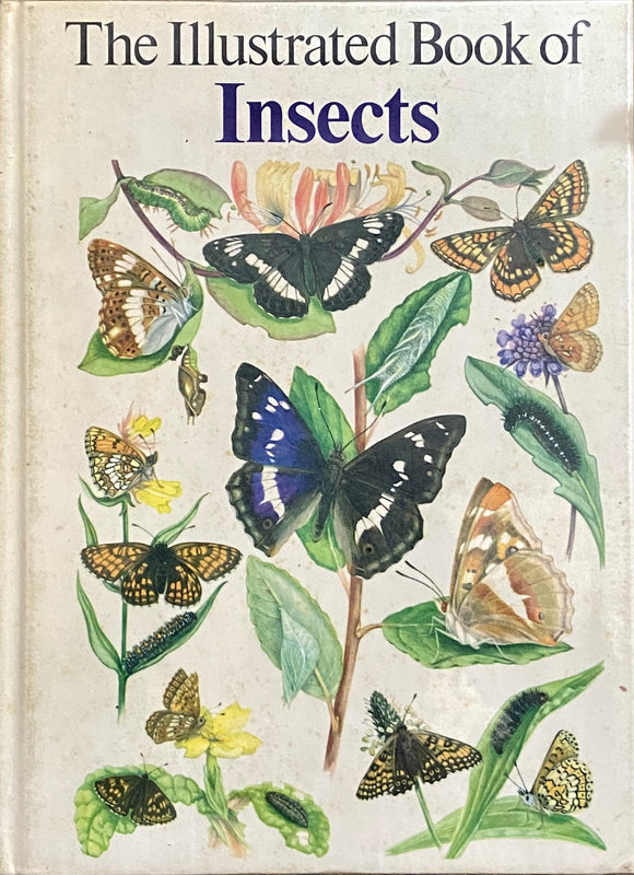 The Illustrated Book of Insects