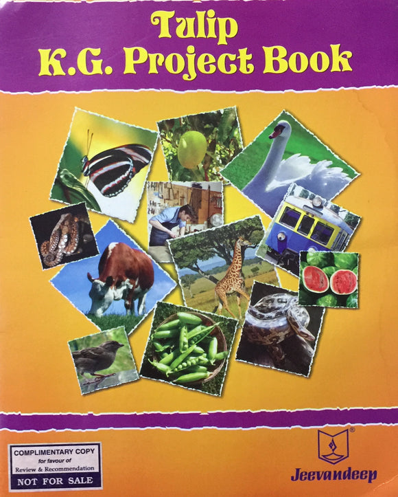 KG Project Book