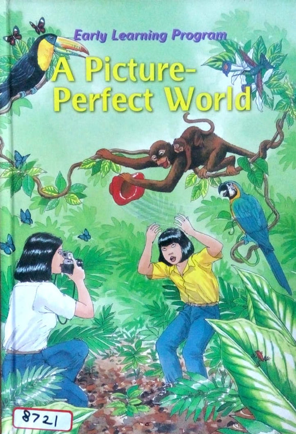 Early learning program: A picture - perfect world