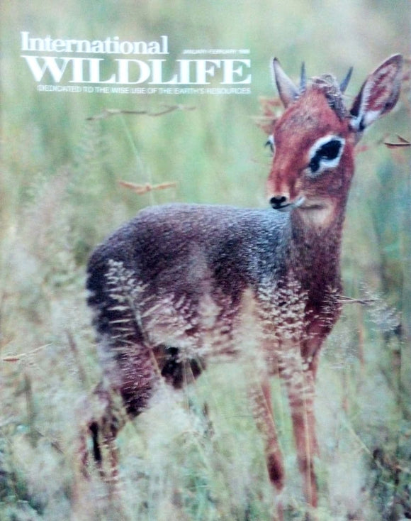 International wildlife Jan Feb 1988