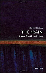 The Brain (Very Short Introductions) By Michael O'Shea