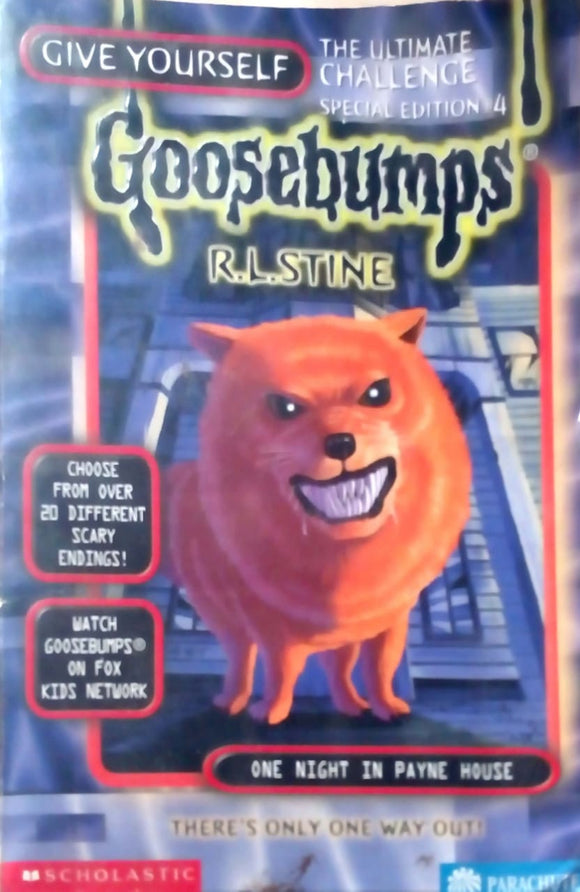 One Night in Payne House (Give Yourself Goosebumps Special Edition, No. 4) by R. L. Stine