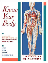 know your body by E.B. Keefe