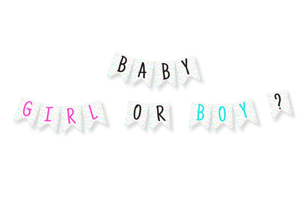 Baby Boy or Baby Girl Banderitas