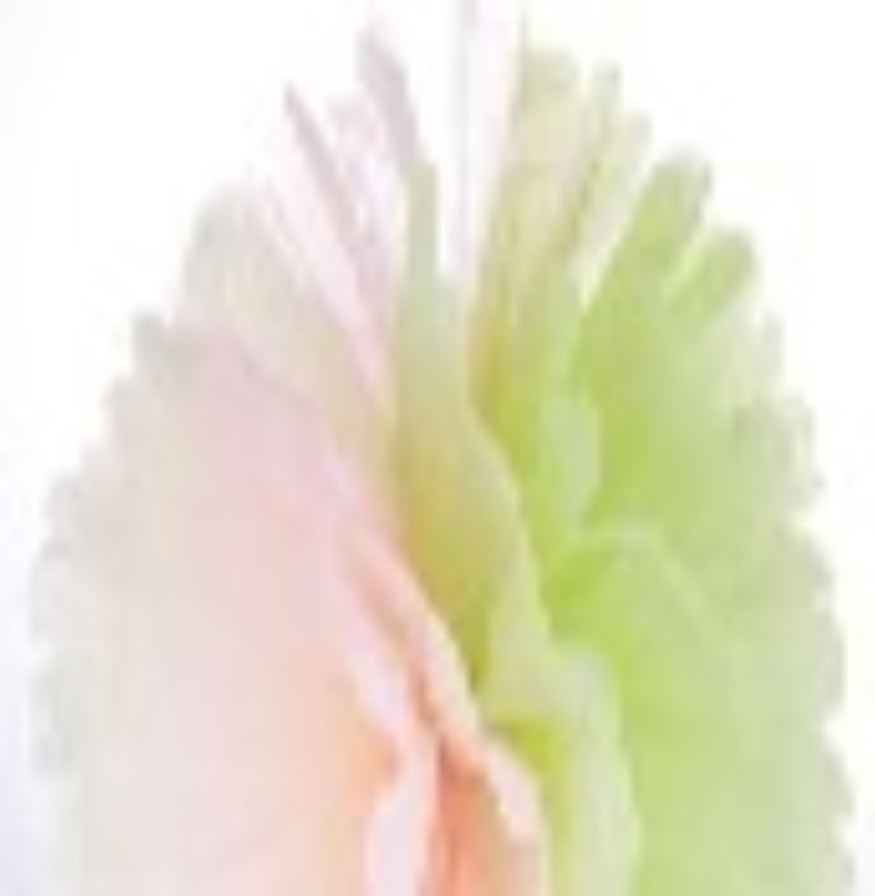 Frou Frou White Peach Green 16""