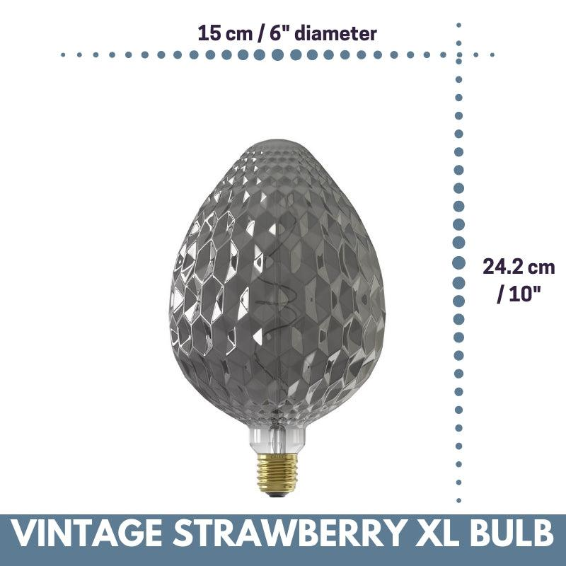 Decorative Vintage Oversized STRAWBERRY LED Bulb for Display Table Desk Pendant Light Fixtures-XL-Titanium-Distinct Designs (London) Ltd