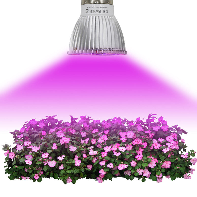 Growing Lamp