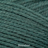 stylecraft special aran with wool - succulent