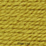 stylecraft special chunky - lime