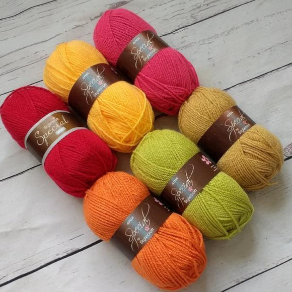 Stylecraft Special - Autumn  Yarn Pack