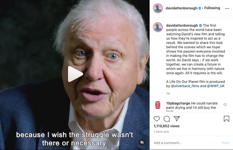 David-Attenborough-On-Instagram