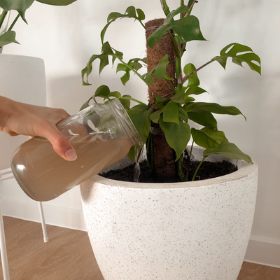 Urban-Composter-Australia-Apartment-Composting-Bucket