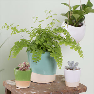 Mini Dip Glaze Planter