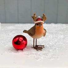 Robin In Christmas Hat