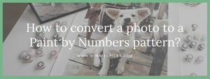 Convert photo to a paint by numbers pattern