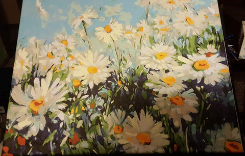 Field of Daisies - Paint by Numbers for Adults