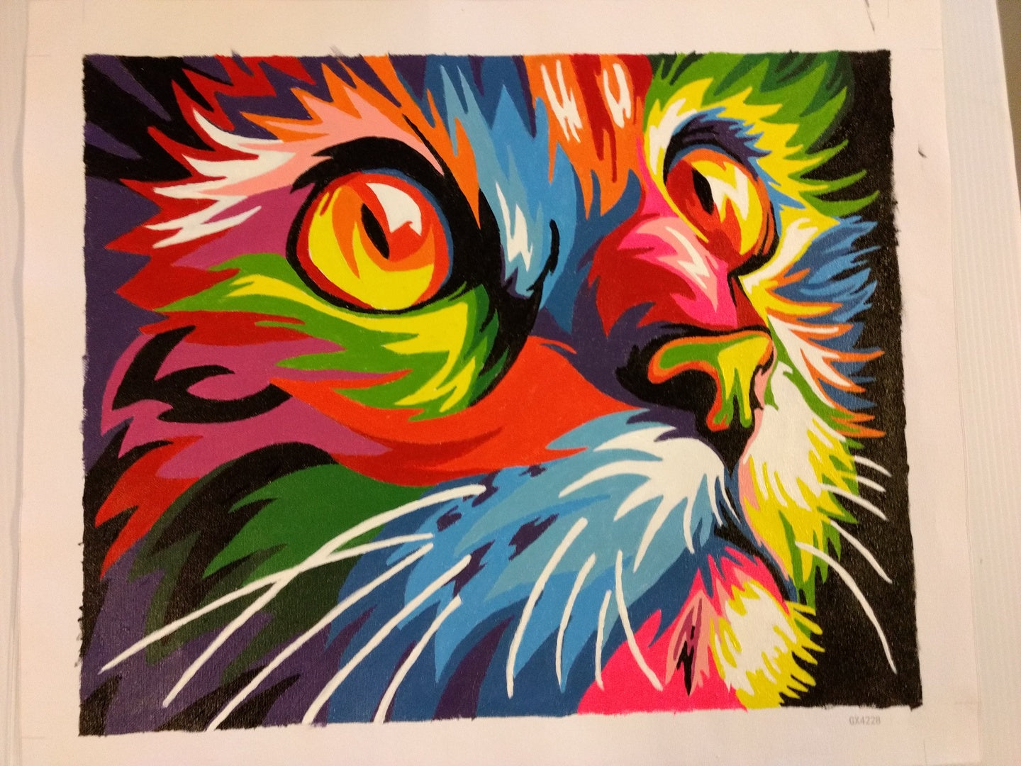 Abstract Colorful Cat - Paint by Numbers for Adults