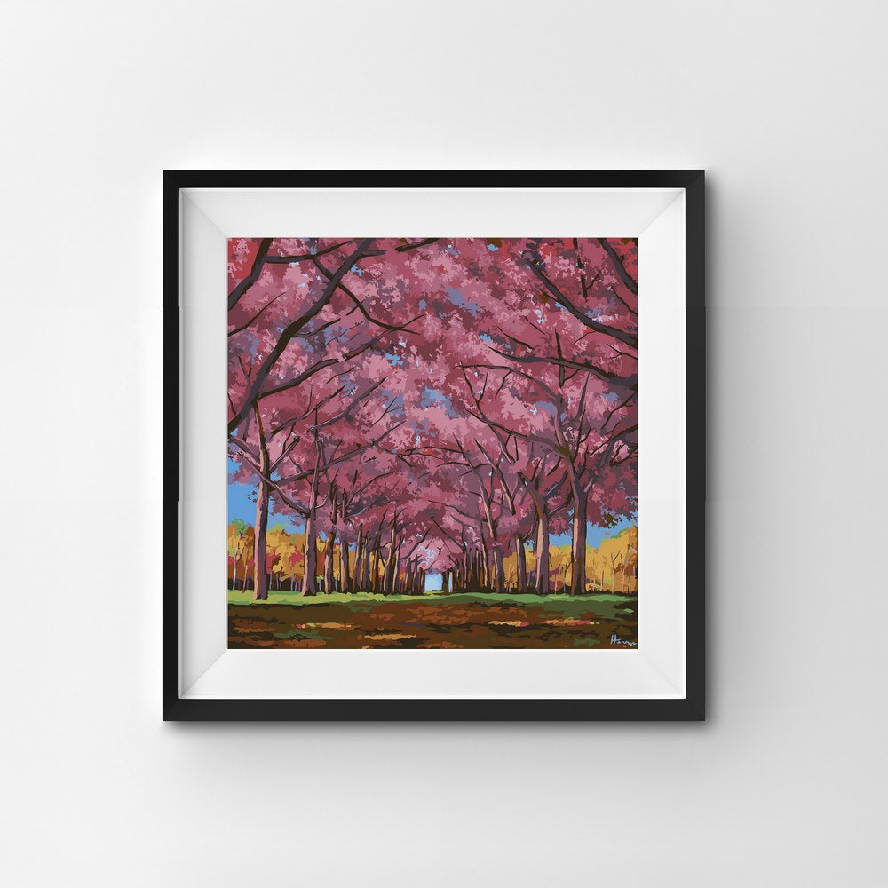 Painting By Number Cherry Trees Blossoming