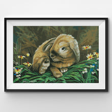 Painting By Number Little cute rabbit in the forest