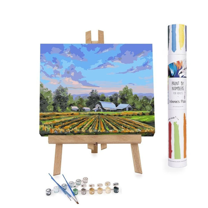 Paint By Numbers Adults Farm Landscape Blue Sky
