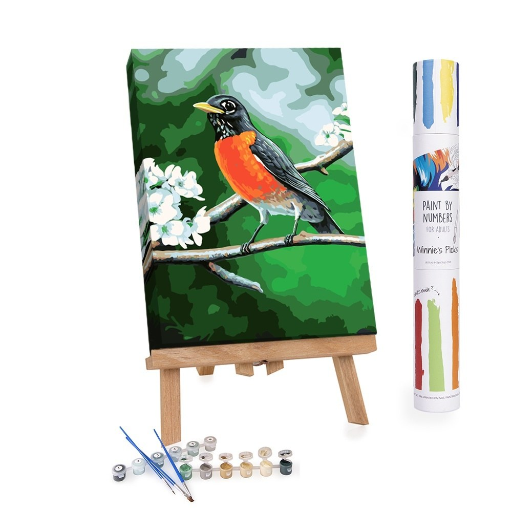 Paint By Numbers Adults Robin in A Tree in Spring
