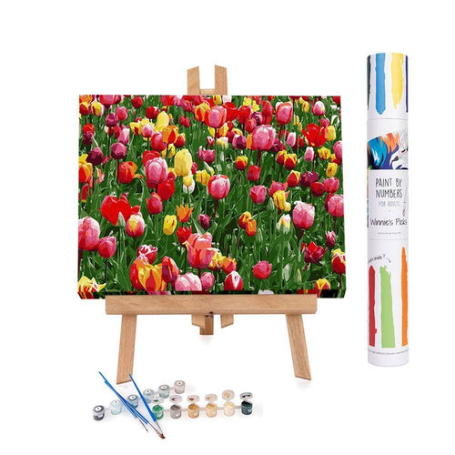 Paint by numbers of bright tulips flowers in the Keukenhof gardens