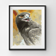 brown eagle portrait painting by numbers