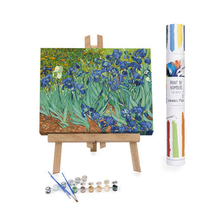 Paint By Numbers Adults Irises Flowers