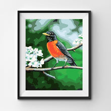 Painting By Number Robin Bird on a Branch in Summer