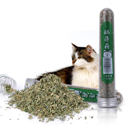 1 bottle 45ml Natural Pet Kitten Cat Mint make your cat to have a good mood pet cat