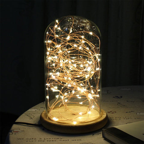 2M / 5M Battery Powered LED Copper Wire Fairy String light Strips For Christmas Tree