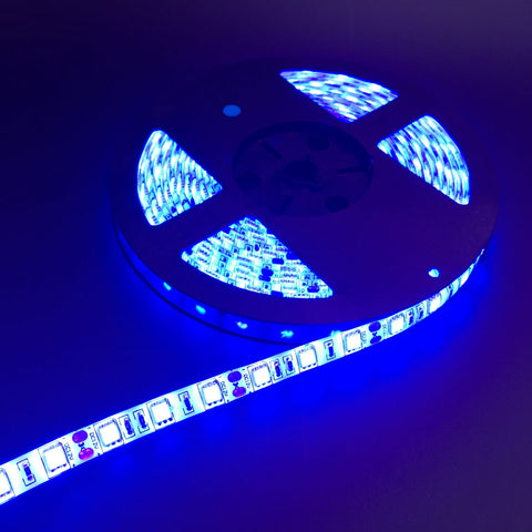 5M 5050 SMD LED Strip light 12V IP65 Waterproof 300 LED Red/Yellow/Blue/Green/White/Warm