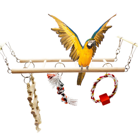 Bird Swing for Parrot Hamster Parakeet Budgie Cockatiel Training Climbing Ladder