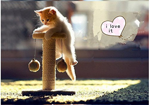 Climbing Tree for Cat Cat Jumping Toy Climbing Frame Cat Furniture Scratching Post Pet