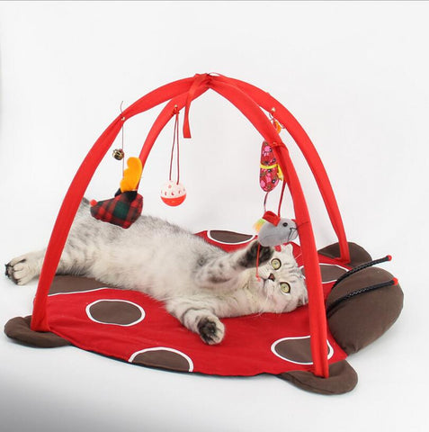 Pet Cat Bed Toys Mobile Activity Playing Bed Toys Cat Bed Pad Blanket House Pet
