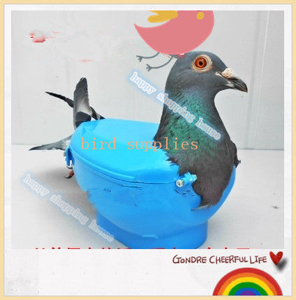 Pet bird pigeon racing for dove products supplies with medicine injection see pigeon eye