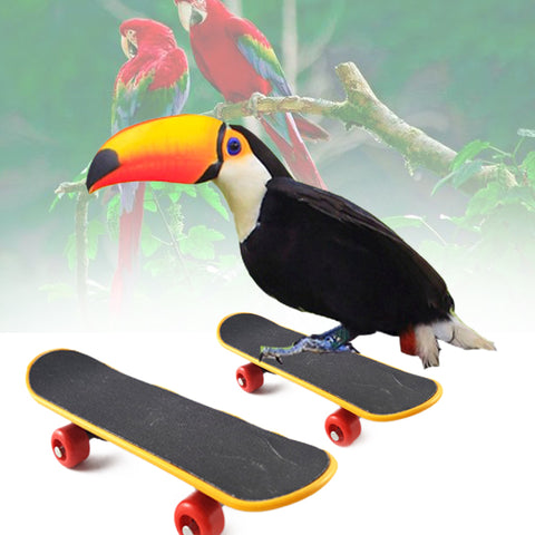 Plastic Pet Mini Skateboard Bird Training Skateboard Stents Scrub Scooter Skate Boarding
